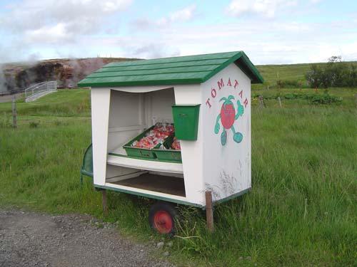 Prix Des Tomates En Islande